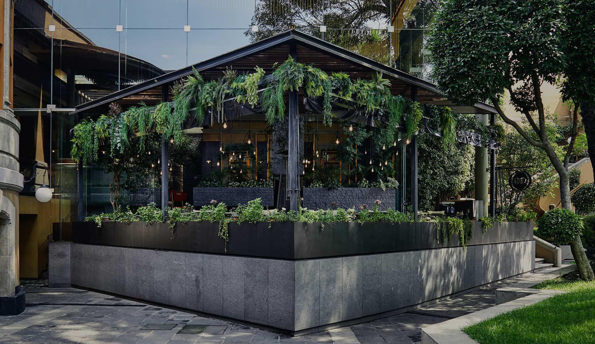 Restaurantes Roma Norte
